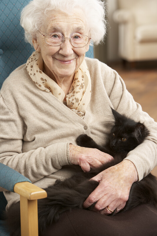 Pets are allowed at Cedar Lane Senior Living Community